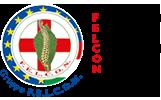 Benvenuti in Gruppo F.E.L.C.O.N. - Federazione Europea Laureati Chiropratici Osteopati Naturopati